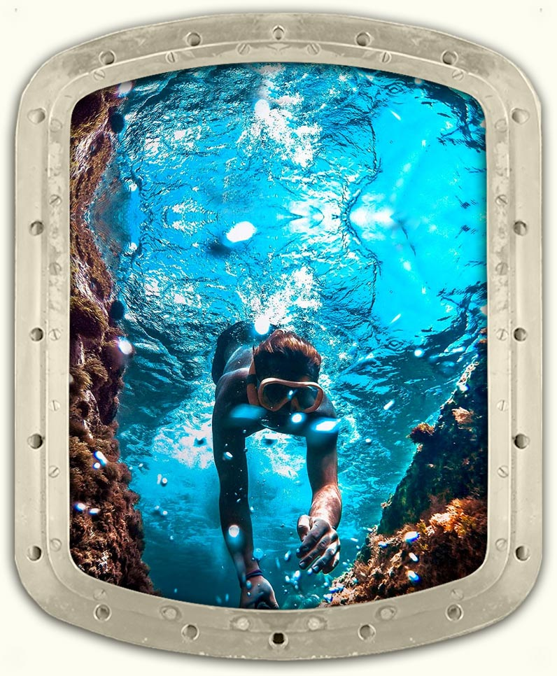 Deluxe Dolphin Watch & Snorkel BBQ